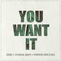 2WEI feat. Ohana Bam & Marvin Brooks - You Want It