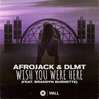 Afrojack & Dlmt & Brandyn Burnette - Wish You Were Here