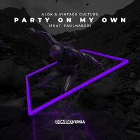 Alok & Vintage Culture feat. FAULHABER - Party On My Own
