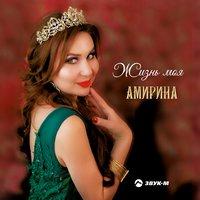 Амирина feat. Шамиль Кашешов - Ревность Remix