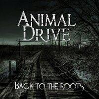 Animal Drive - The Look