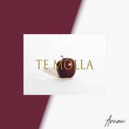 Arnon feat. Killua - Te Molla