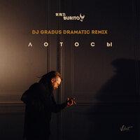 Burito - Лотосы (DJ Gradus Dramatic Remix)