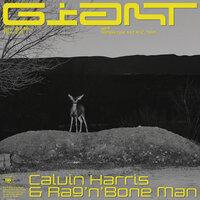 Calvin Harris feat Rag'n'Bone Man - Giant