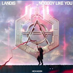 Landis - Nobody Like You (RetroVision Flip)