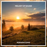 Melody of Sound - Morning Song
