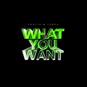 Sanjin & Jumpa - What You Want