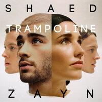 Shaed feat ZAYN - Trampoline