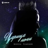 Шамиль Кашешов - Царица ночи