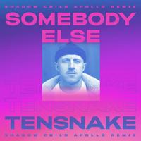 Tensnake feat. Boy Matthews - Somebody Else