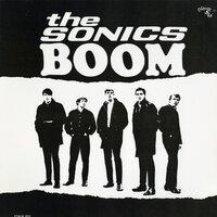 The Sonics - Shot Down
