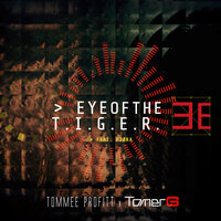 Tommee Profitt feat. FJØRA - Eye Of The Tiger (TOMER G & MARKO Extended Dance Mix)
